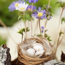 Spring Inspiration shoot © Lena Larsson