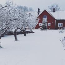 Julentré Sörgården